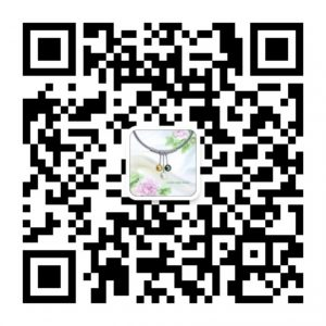 qrcode_for_gh_38c5e168ee0e_860-300x300